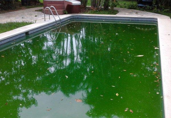 Recuperación el agua verde de piscinas en Villanueva de la Cañada